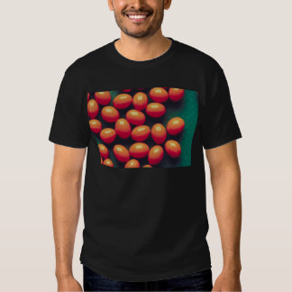 Kommentera c t shirts