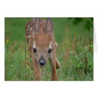Kommer här det Bambi kortet Hälsningskort