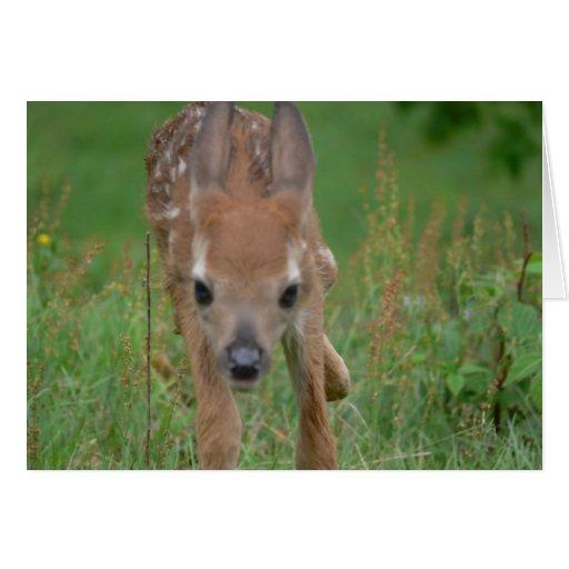 Kommer här det Bambi kortet Kort