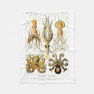 Konst för för Ernst Haeckel Gamochonia Fleecefilt