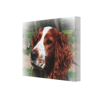 Konst för hund för SpringerSpaniel Canvastryck