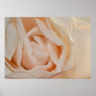 Konst för öde för kärlek för vit rosblommafred affischer