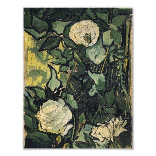Konst för vintage för Vincent Van Gogh vit rosro Fotografiska Tryck