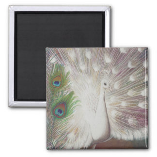 Konst för vitpåfågel- och gröntpåfågelfjädern magnet