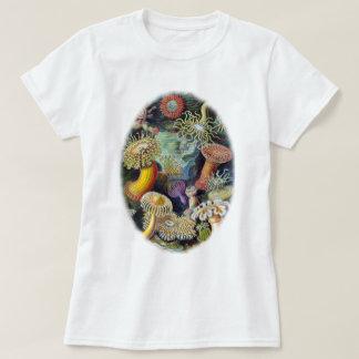 konsten av naturen av Ernst Haeckel T Shirts