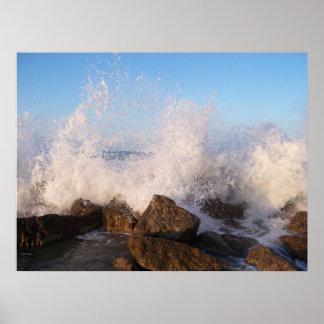 Konstfotografi den havsaffischen eller poster
