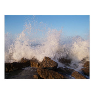 Konstfotografi den havsaffischen eller kanvastryck