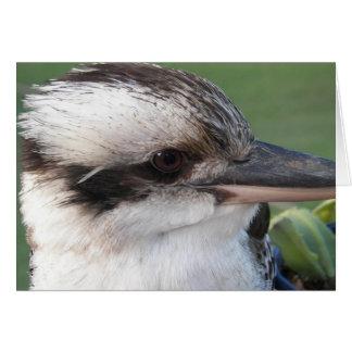 kookaburra hälsningskort
