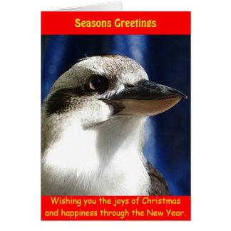 Kookaburra julkort hälsningskort