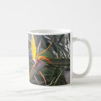 kopp med den tropiska blomman