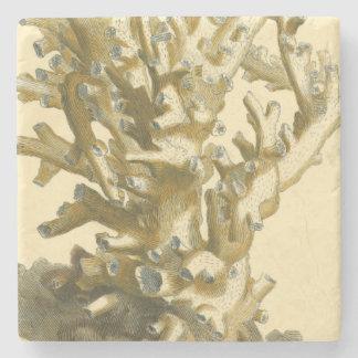 Korall vid havet underlägg sten