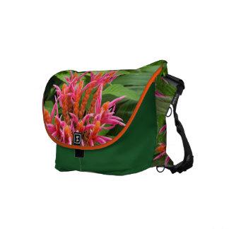 KorallAphelandra messenger bag