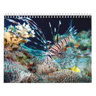 Korallhavskalender 2014 kalender
