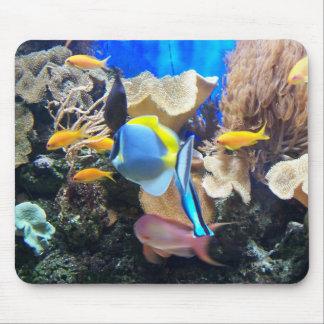 Korallrev Mousepad Musmatta