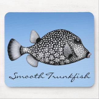 Korallreven slätar trunkfishen Mousepad Musmatta