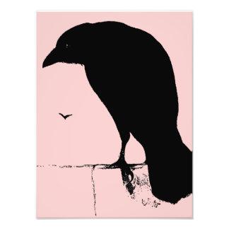 Korpsvart Silhouette - vintage Goth Ravens & gal Foton