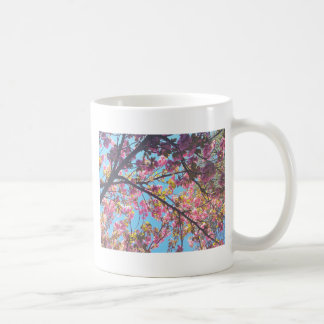 Körsbär Blossoms.JPG Kaffemugg