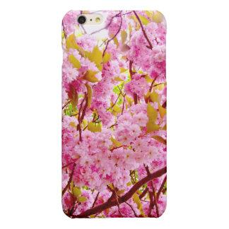 Körsbärsröd blommar