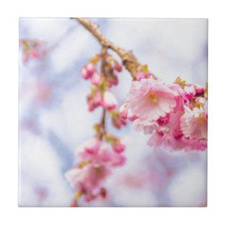 Körsbärsröd blommar liten kakelplatta