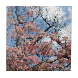 Körsbärsröda blommar liten kakelplatta