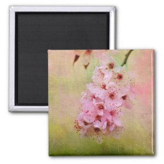 Körsbärsröda blommar magnet
