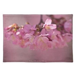 Körsbärsrött mattt blommarHot Springs 2012 ställe Bordstablett