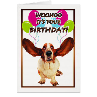 kort för bassethundfödelsedag - woohoo är det din