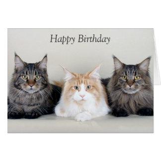 Kort för födelsedag för gulligt foto för Maine