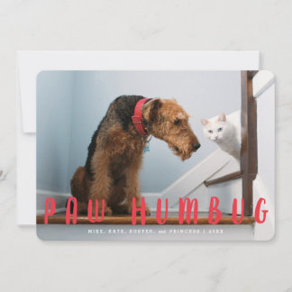 Paw Humbug Cute Dog or Cat | Holiday Photo Card