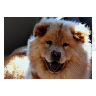 Kort för hälsning för hund för ChowChow
