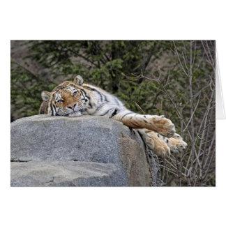 """Kort för hälsning """"för lat dag"""" för tiger"""