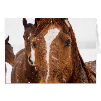 Kort för helgdag för önskemål för vinterhäst
