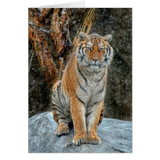 Kort för helgdag för tigersnönedgång