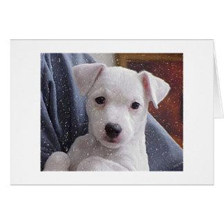 Kort för porträtt för hund för jackRussell Terrier