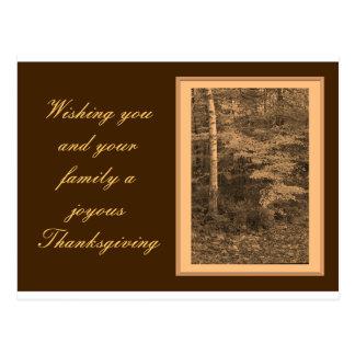 Kort för thanksgivingdagfoto vykort
