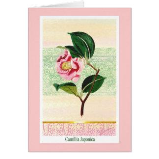 Kort för vintageCamillia botaniskt hälsning