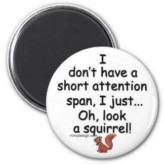 Kort uppmärksamhet spänner över ekorren magnet rund 5.7 cm