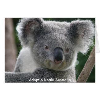 Kortet adopterar en Koala Australien Hälsningskort