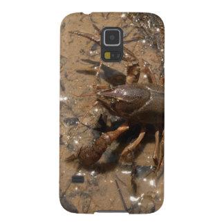 Kräftor i damm i Alabama Galaxy S5 Fodral