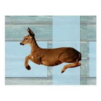 Kråma sig hjort vykort