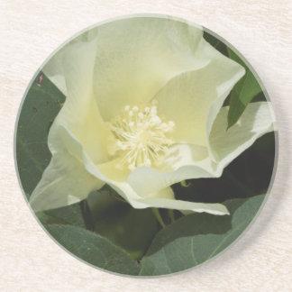 Krämigt - blommar för vitbomullsväxt underlägg sandsten