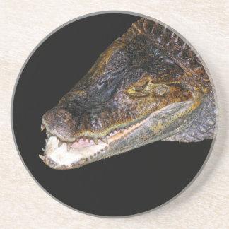 Krokodil-/alligatorhuvud, svartbaksida underlägg sandsten