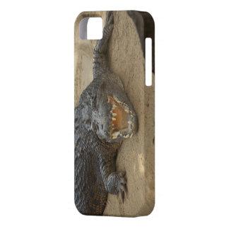 krokodil för fodral för iPhone 5 kvinnlig iPhone 5 Case-Mate Cases