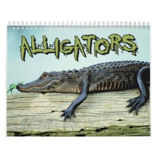 Krokodilerväggkalender Kalender
