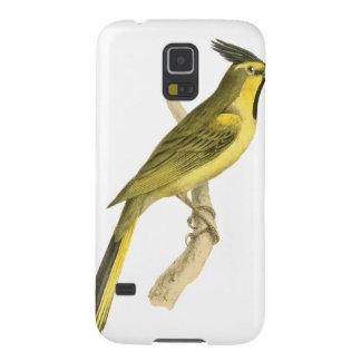 Krönad Bunting fågelillustration av den William Galaxy S5 Fodral