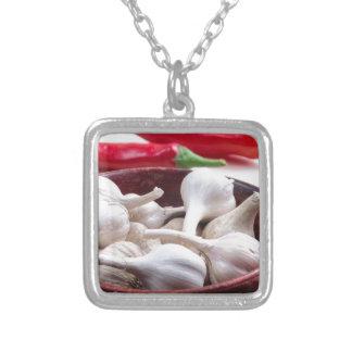 Kryddor för att laga mat closeupen silverpläterat halsband