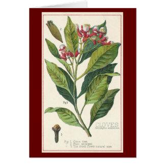 Kryddor för vintagematörter, botanik av hälsningskort