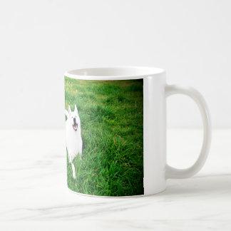 Krystal tazzavit kaffemugg