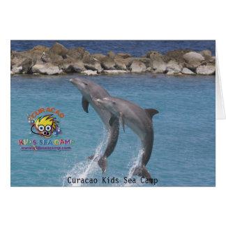 ksc_dolphin_ läger för Curacao ungehav Hälsningskort