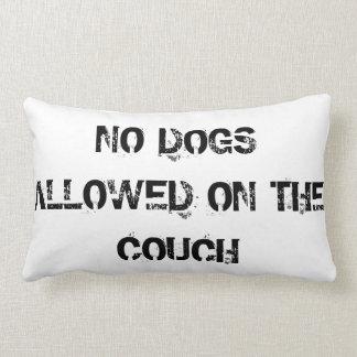 Kudder hundar som är tillåtna på soffan lumbarkudde
